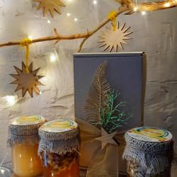 Набір меду «Новий рік – 01» ЕКО-МедОК, 1 кг